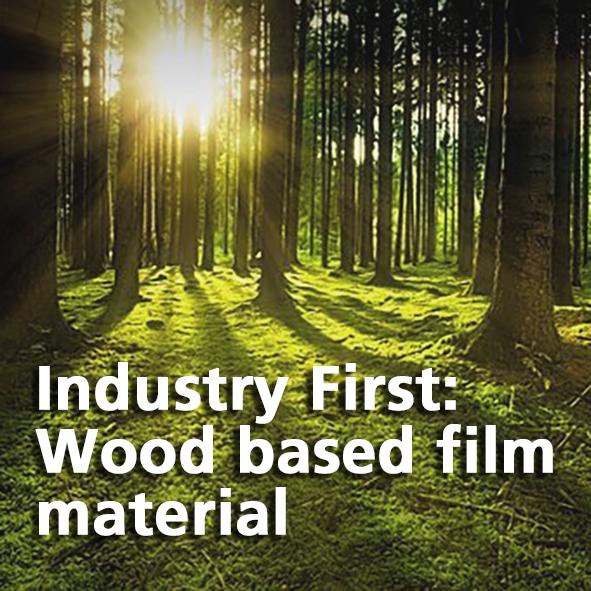 Wood based film